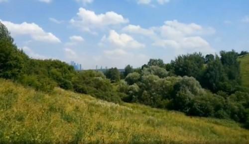 Жители Гагаринского могут посмотреть видеоподкаст Мосприроды о заповедных местах Крылатских холмов