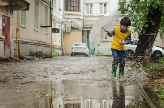 Синоптики обещают дождливую неделю жителям Академического района