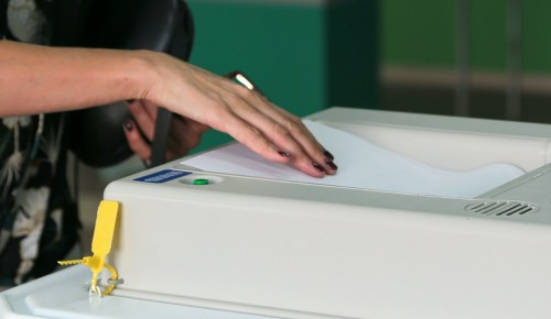 ОП Москвы: К корпусу наблюдателей за выборами присоединились 15 тыс человек