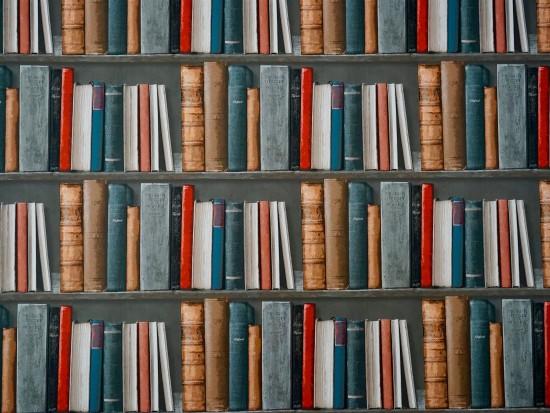 Библиотека №195 опубликовала видеоролик к 80-летию писателя Сергея Довлатова
