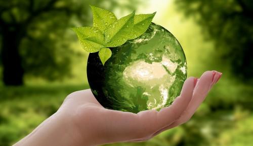 Экоцентр «Битцевский лес» Ясенева был награжден за вовлечение населения в процесс раздельного сбора отходов