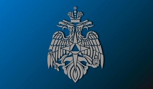Владимир Путин назначил врио главы МЧС России Александра Чуприяна