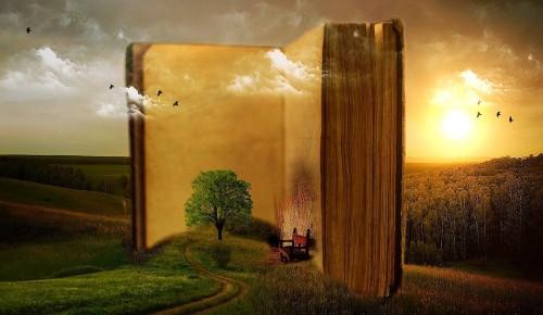 В библиотеке №177 опубликовали литературный обзор серии познавательных книг «Руководство юного гения»