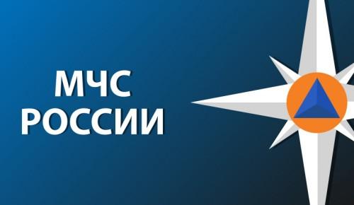 МЧС Москвы продолжает занятия в онлайн-формате