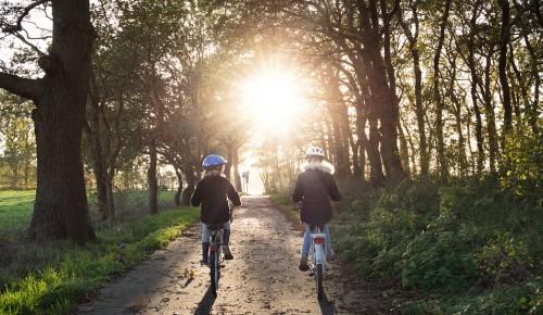 """Экоцентр """"Битцевский лес"""" в День без автомобиля предлагает вспомнить экологичные виды транспорта"""