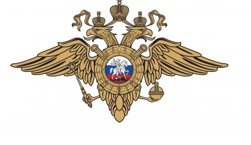 Сотрудники полиции на юго-западе Москвы задержали подозреваемую в совершении кражи