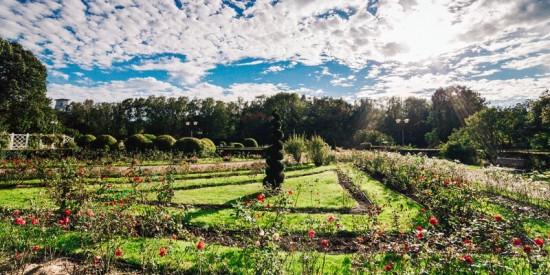 Прошедший теплый сезон был насыщенным и продуктивным для столичных парков — Сергунина