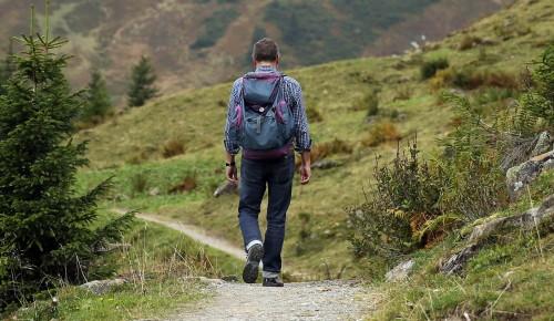 Экоцентр «Воробьёвы горы» опубликовал викторину ко Всемирному дню туризма