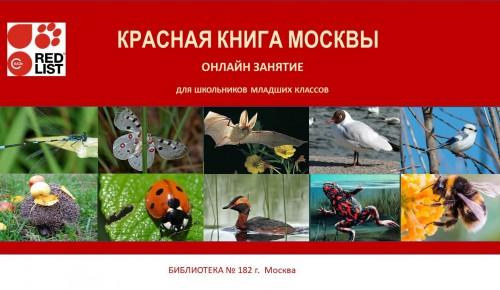 """В библиотеке №182 пройдет онлайн-занятие по теме """"Красная книга Москвы"""""""