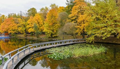 Воронцовский парк стал одним из лучших мест для осенней фотосессии в Москве
