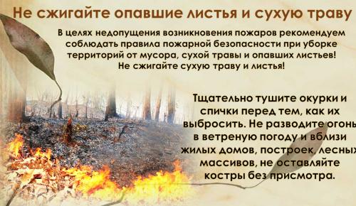 Не сжигайте опавшие листья и сухую траву