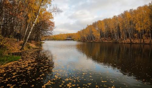 """Битцевский лес приглашает с 11 по 17 октября на экомарафон """"Заповедная неделя"""""""