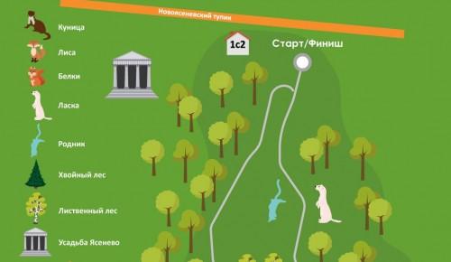 Битцевский лес в Ясеневе вошёл в число лучших территорий для осенних променадов