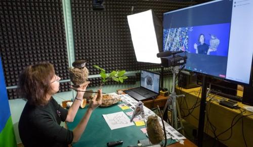 Дарвиновский музей приглашает ребят на онлайн-занятия «Zoomка»