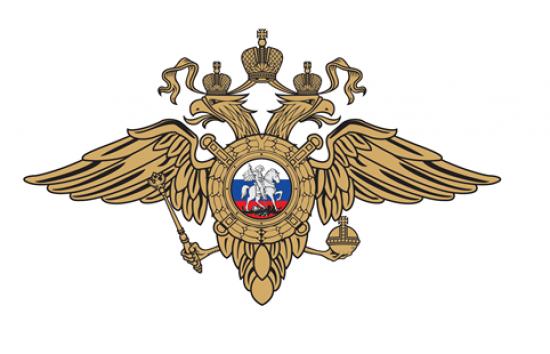 Полицейские на юго-западе Москвы задержали подозреваемого в разбое