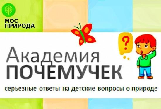 """Экоцентр """"Лесная сказка"""" 15 октября открывает онлайн-проект """"Академия почемучек"""""""