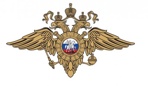 Сотрудниками полиции юго-запада Москвы задержан подозреваемый в краже