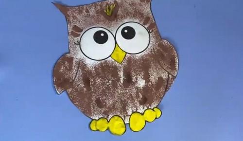 """Парк """"Усадьба Воронцово"""" опубликовал мастер-класс по созданию рисунка совы"""