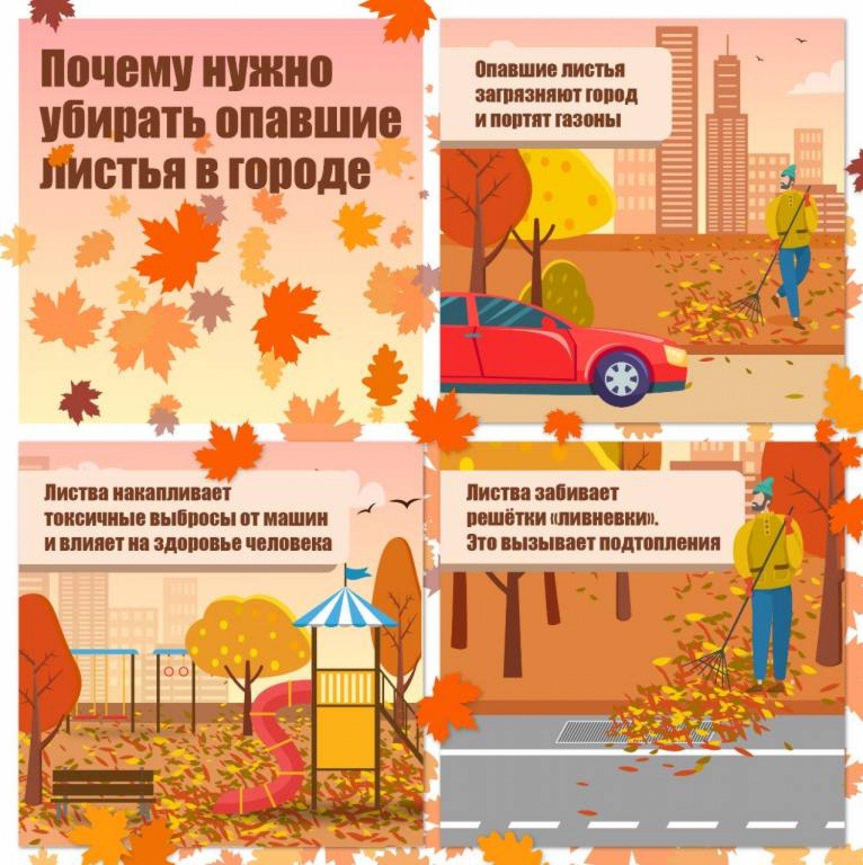 ТЗ 1 1709 листья.jpg